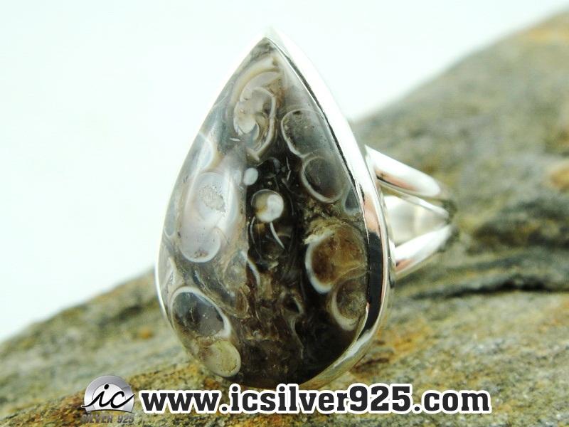 ▽ฟอสซิลหอยอาเกต Turritella แหวนเงินแท้ 925(แหวนเบอร์ : 55 , 5.5g)