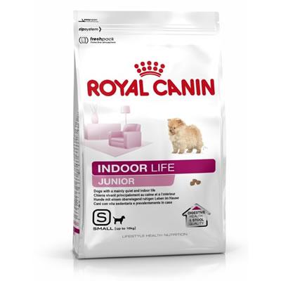 Mini Indoor Life สุนัขขนาดเล็กเลี้ยงในบ้าน