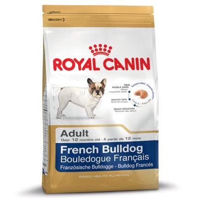 French Bulldog สุนัขพันธ์ุเฟรนช์ บูลด็อก