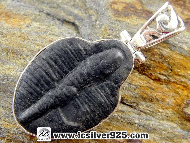 ▽ฟอสซิลไทรโลไบต์(Trilobite) จี้เงินแท้ 925 (4.8g)