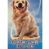 Ecto-Tak เอ็คโต-แทค ยากำจัดเห็บหมัดและไรขี้เรื้อนสุนัขใช้ภายนอก ขนาด 100 มล.
