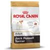 Jack Russell สุนัขพันธุ์แจ็ค รัสเซลล์