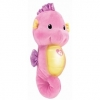 ตุ๊กตาม้าน้ำ Fisher Price - ของเล่นเด็กเสริมพัฒนาการ