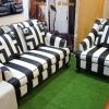 ชุด D-Zebra 1 + D-Zebra 2