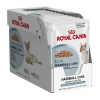Royal Canin Hairball Care 85กรัมX12