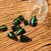 ++ ลำตัว (ท้อง) แมลงทับ จำนวน 100 ชิ้น - Jewel Beetle Body ++