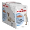 Royal Canin Ultra Light 85กรัมX12