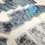 บัตรพลาสติกใส พีวีซีการ์ดโปร่งแสง ไซส์ 4.5x 7.5 cm