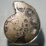 ไพไรต์แอมโมไนต์ Pyrite Ammoniteแหวนเงินแท้ 925 (แหวนเบอร์ : 57)
