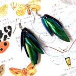 ++ ต่างหูปีกแมลงทับ สีเขียวมรกตสวยงาม (อะไหล่สีเงิน) ++