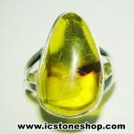 อำพันโคลัมเบีย Amber - แหวนหูเงินแท้ 925 (ขนาดแหวนเบอร์ : 55 ,3.9g)
