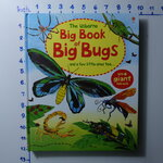 sbo Big book of Big Bug