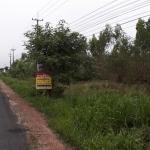 #ขายที่ดินท่าลาด-เกาะขนุน-สนามชัยเขต เส้น3245 ฉะเชิงเทรา 21ไร่2งาน21ตรว ห่างจากทางถนน331 แยกนาน้อย เพียง900เมตร