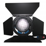 T&Y Tungsten Fresnel Light TY-2000TF