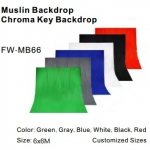 Lighting Stands&Background FW-MB66