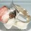 ▽โรโดโครไซท์ RHODOCHROSITE -ARGANTINA แหวนเงินแท้ 925 (แหวนเบอร์ : 52) thumbnail 6