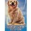 Ecto-Tak เอ็คโต-แทค ยากำจัดเห็บหมัดและไรขี้เรื้อนสุนัขใช้ภายนอก ขนาด 100 มล. thumbnail 1