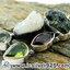▽สะเก็ดดาวโมดาไวท์ MOLDAVITE, Ethiopian Opal Rough, Green Amethyst/ Prasiolite, Garnet & Peridot -จี้เงินแท้ 925 (6.3g) thumbnail 4