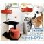 คอนโดแมว รุ่น TRE17 จาก Pet8 จัดส่งฟรี thumbnail 2
