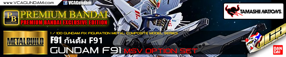 GUNDAM F91 MSV OPTION SET