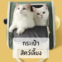 กระเป๋าใส่สัตว์เลี้ยง